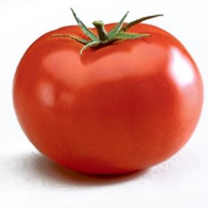 Tomate nedeterminate BIG BEEF F1